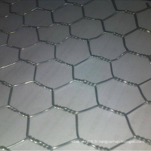 Fil hexagonal avec fil galvanisé plongé chaud