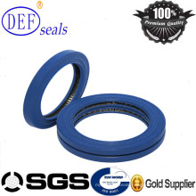 High Temperature PTFE Spring Energinzed Seals for Valve