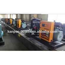 60Hz 1800rpm to Philippine Generator Output (COP) 200kw Natural Gas Power Generator
