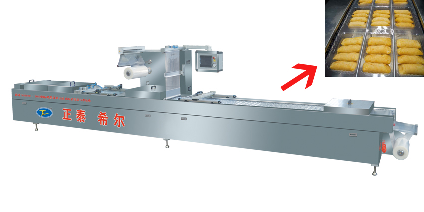 Continuous Stretch Film Vacuum Sealer