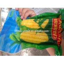 IQF sweet corn cob