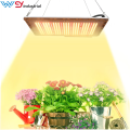 Espectro completo de la placa Quantum LED Grow Light