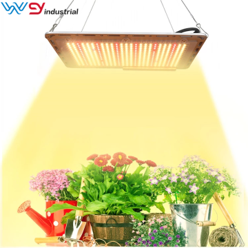 Quantum LED Grow Light Board Full Spectrum