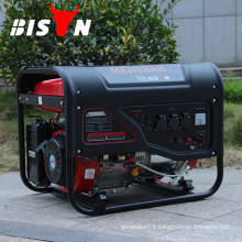 BISON(CHINA)Portable Battery Operated Gasoline Generator 4kv 4kva