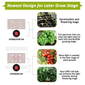 COB LED Grow Light para sótano