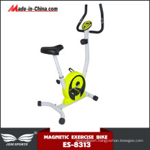 Wholesale Adjustable Life Gear Bright Color Magnetic Bike