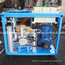 Home Compressor CNG para carro CNG Compressor Preço (bx6cngd)
