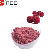 Factory supply High quality Waxberry Powder