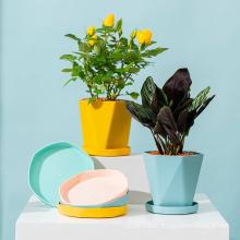 Amazon hot sale small mini irregular modern decorative garden flower pots plastic plant pots flower pots and planters
