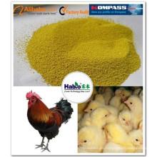 Enzima compuesta para alimentación avícola (broiler, capa de huevo, pato)