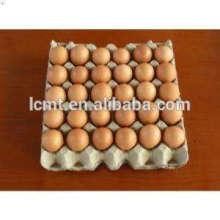bandejas de ovo usado sistema automático de coleta de ovos para venda