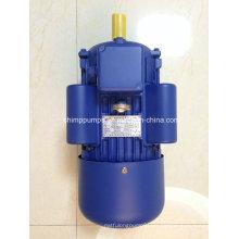 Chimp Yl Serie AC Elektromotor Motor für Luftverdichter