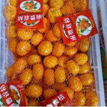 2016 Nouvelle Crop Nanfeng Petit Sweet Baby Mandarin