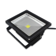 ES-30W LED Flood Light Bulbs