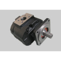 Hydraulic gear pumps cast iron