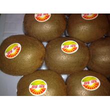 New Crop Kiwi Fruit for Sale