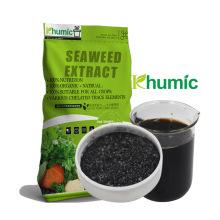 liquid seaweed extract gel organic fertilizer
