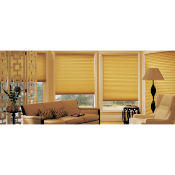 Blackout Cellular Shades Cordless