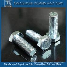 Ts Manufacturer Galvanized Bsw Hex Bolt