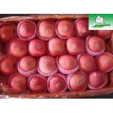 Shandong fuji maçã, frutas preços de mercado maçã