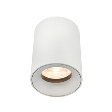 Modern Outdoor Round Surface Mounted Downlight