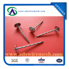 9g/10g/11g/12g Umbrella Roofing Nails for Africa and Indian Market