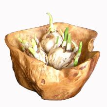 25PCS Antique Carved Irregular Handmade Wooden Flowerpot