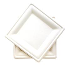Biodegradable Sugarcane Bagasse Paper Tableware Square Cake Plates