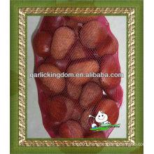 Good quality dried chestnut