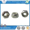 Stainless Steel 304 Hex Nylon Nut