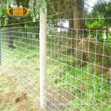 8' fixed knot galvanised game wire farm fencing for goat