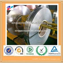 Tira de plata de níquel C7521