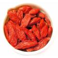 alto valor nutritivo bagas de goji alto valor nutricional Goji berries