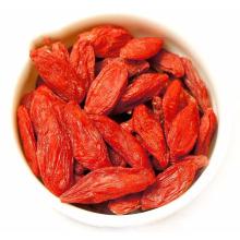 alto valor nutricional bayas de goji alto valor nutricional bayas de Goji