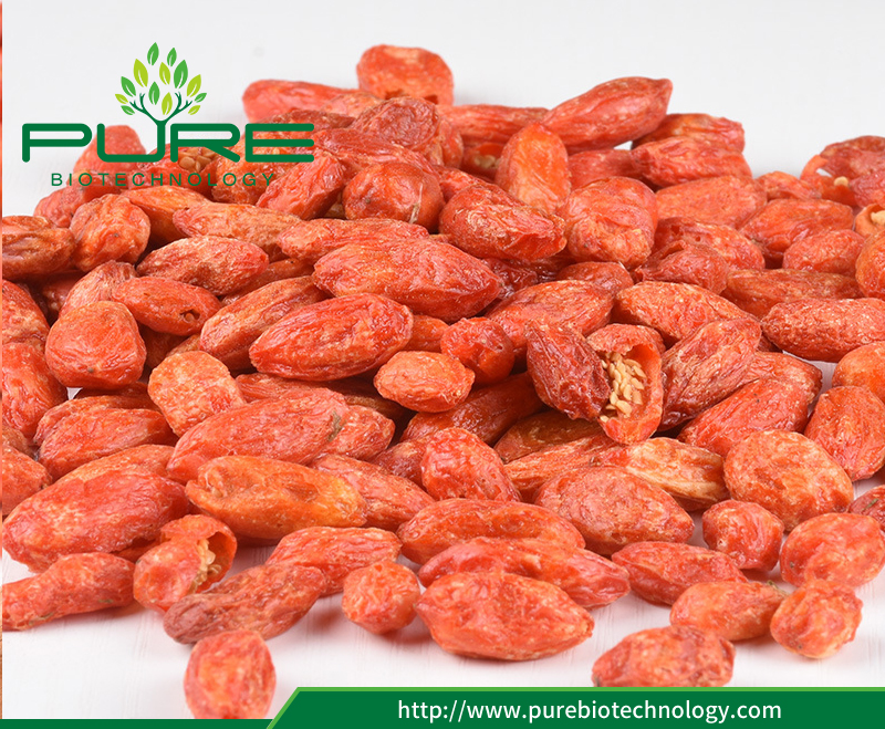 Freeze-drying Ningxia Red Goji Berries