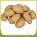 Preço fresco de batata doce