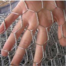 Hex. Rede de arame / Rede de arame de galinha / Rede de arame galvanizado