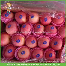 Ofereça a maçã fresca deliciosa chinesa com preço baixo & alta qualidade !!!!