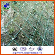 Наклонная защитная сетка Sns (прямые цены на заводе) (SNS001)