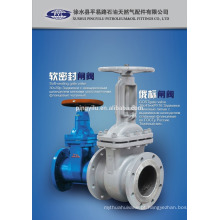 Z41h-16c isqueiro aço carbono gost resiliente válvula de portão Z41H-16C fabricados na China