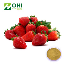 Strawberry fruit Extract Powder bulk