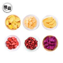 Venda Por Atacado e Varejo Granel Embalagem A Vácuo liofilizado Food Fruit Crisps