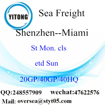 Shenzhen Port Sea Freight Shipping ke Miami