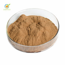 Factory Supply White Mulberry Root-Bark Extract Cortex Mori Extract