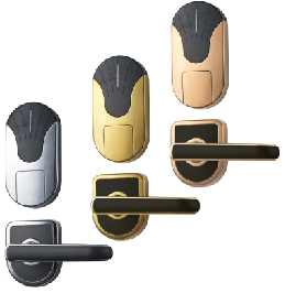 Small Handle Locks