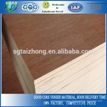 Furniture Grade Bintangor Veneers Commercial Plywood