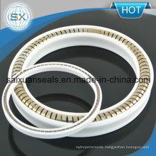 Ring Lip / Spring-Loaded / U-Shaped Seal Metal Variseal