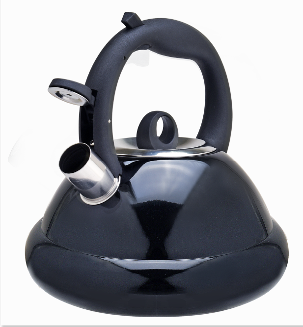 Stainless Steel Tea Kettle Fh 458b