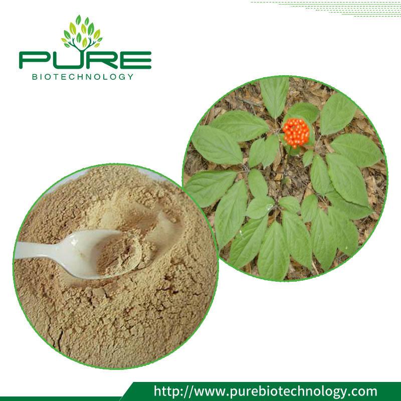 Ginseng Leaf Extract Powder