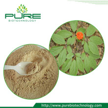 Asli Siberian Ginseng Leaf Extract Powder